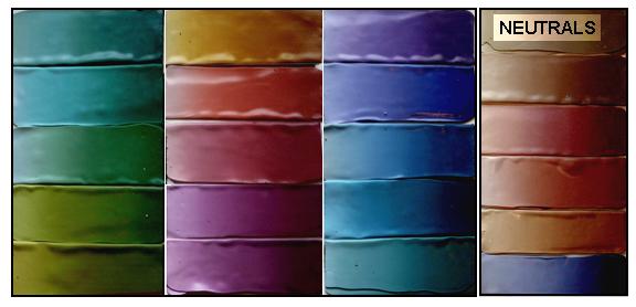 Tide pool color palette. Carol Simmons