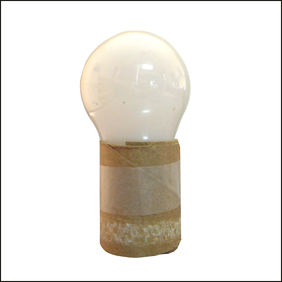 bulb in sleeve 8 in